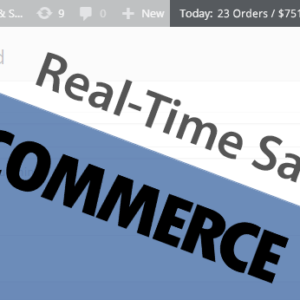 woocommerce real time revenue